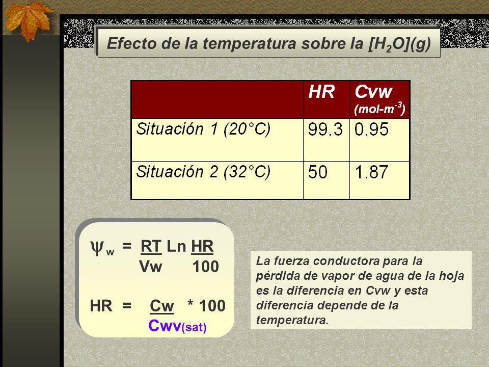 Efecto de la temperatura sobre la [H2O](g)